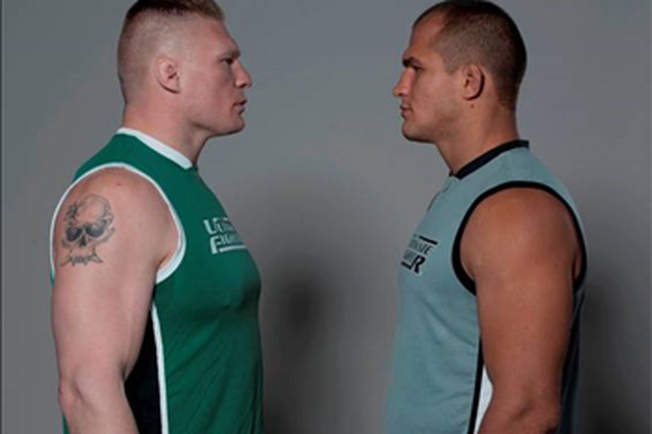 Promoção da 13ª temporada de The Ultimate Fighter: Team Lesnar vs. Team Dos Santos (Foto: Bloody Elbow)